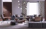 Mobília Home moderna Best-Selling da sala de visitas (Cx7001)
