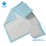 60X60cm Broad Size Most Absorbs Puppy Pet Wee Training Pads