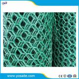 증강을%s 플라스틱 HDPE Geonet