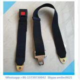 Cinturón de seguridad simple de la seguridad de 2 puntas para el asiento trasero