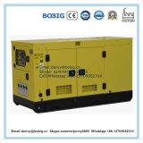 generatore diesel di prezzi bassi 15kVA dal motore dei cilindri del Lijia due
