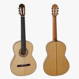 Fester Vorlagengrad-spanisches Flamenco-Gitarren-Modell Sc-095f China-Aiersi