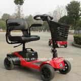 Motore del veicolo elettrico del motorino delle quattro rotelle con Ce