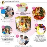 2017 het significante Huis van Doll van de Gift DIY