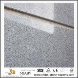 G603 piso de granito cinza cobrindo com baixo custo