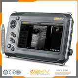 S6 ультразвукового аппарата собака поп Ultrasonography мелких животных