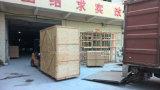 Four rotatoire électrique de crémaillère de la machine 16-Tray de boulangerie à vendre
