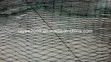 Gabbia netta priva di nodi verde di piscicoltura dell'HDPE dell'attrezzatura di pesca