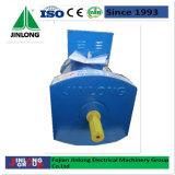 Jinlong Stc 시리즈 삼상 a.c. 동시 발전기