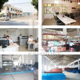 Pakhuis van het Comité van de Sandwich van ISO EPS Geprefabriceerde
