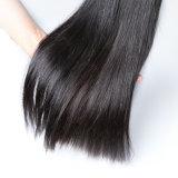 Clip humain blond de Remy de cheveu d'Alimina dans des extensions de cheveu