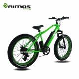 Vélo électrique de gros pneu d'AMS-Tde-08 1000W/vélo électrique de Bicycle/E