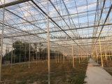 スマートな鉄骨構造フレームは冷却装置が付いている温室を取除いた