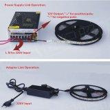 12V/24V scaldano la striscia flessibile impermeabile bianca dell'indicatore luminoso 2800K 3528 6-10W LED con CE RoHS