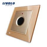 Livolo BRITISCHE Standardverspätung-Wand-Schalter-Kontaktbuchse Vl-W291y-11/12/13