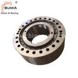 Type de la roue libre la butée d'une façon pour le ciment de l'embrayage palan (RSCI)