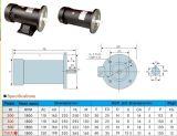 De cirkel Permanente Motor van de Magneet gelijkstroom