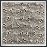 Tela do bordado da flor do laço do ilhó do algodão da tela de algodão