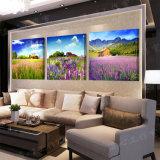 Изображение искусствоа стены декора комнаты картины лаванды картины стены горячего надувательства 3 частей самомоднейшее покрашенное на украшении Mc-223 дома холстины