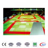 De calidad superior Equipo de Gimnasia cubierta Mat judo portátil