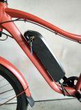 22インチのバイクフレームの取り外し電池との販売のための電気マウンテンバイク
