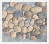 قصر حجارة لأنّ دار جدار وأرضية