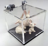 Boîte-cadeau simple acrylique faite sur commande en verre de vin (BTR-Y3014)