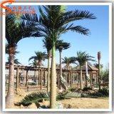 As árvores artificiais distintivas projetam a palmeira artificial falsificada ao ar livre do coco