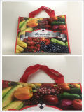 Eco-Friendly PP 비 길쌈된 박판 끈달린 가방, 다채로운 쇼핑 백
