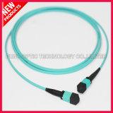 40Gig 12 câble à haute densité des fibres MTP OM3