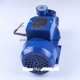 와동 펌프; 말초 펌프; Self-Priming 펌프