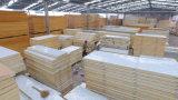 Polyurethan-Zwischenlage-Panel für Tiefkühlkost mit dem CER genehmigt