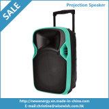 Haut-parleur portatif de projection du son DEL de système en plastique de PA avec la batterie