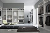 현대 호화스러운 목제 곡물 출입 가능 침실 옷장 옷장 디자인