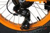 전기 뚱뚱한 자전거를 접히는 20 인치 1500W/500W/200weec