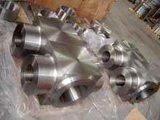 17-4pH (1.4542, X5crnicunb16-4, AISI 630) forjó los ejes de rotación Roces (17/4pH, 17-4 pH, SUS 630) de los anillos del asiento de la cubierta del caso del encierro de los vástagos de las carrocerías de la carrocería de los capos de las bolas de la válvula de la forja