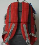 """若者は防水ナイロンコンピュータまたはノートのバックパック袋、15.6の""""ラップトップのためのラップトップのバックパックをハイキングするOEM旅行を設計する"""