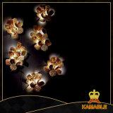 Lumière de luxe de mur de type de projet d'hôtel (KAW17-072)