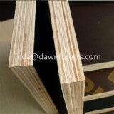 Combi Core dos Hot Press encofrados encofrados de madera contrachapada de 18mm