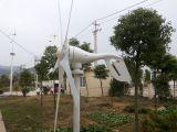 Piccola turbina di vento orizzontale 600W per uso domestico (100W-20KW)