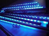 Colorido iluminación con focos al aire libre de la luz de la arandela de la pared del LED