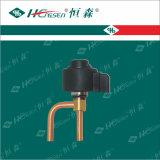 Válvula de Expansión Electrónica / Herramientas de Refrigeración / Accesorios de Refrigeración