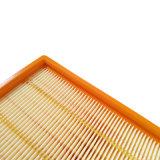 Filtro dell'aria dei pezzi di ricambio di Karcher Nt63 Nt65 Nt75 dell'aspirapolvere