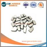 Hartmetall-hartgelötete Spitzen der Fertigung-K10 K20 für Ausschnitt-Hilfsmittel
