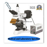 直立したTrinocularの蛍光実験室の顕微鏡