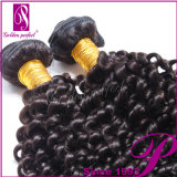 Cheap Kinky Curly Hair Extension 100% virgen de la India el pelo largo