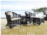 Giardino esterno della mobilia di vimini popolare di disegno che pranza insieme con la Tabella e le presidenze (YT615)