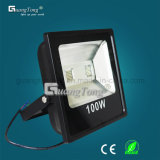 China Factory 10W / 20W / 30W / 50W / 100W LED Outdoor Light LED Floodlight