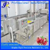 Uma bolha de frutas e produtos hortícolas máquina de lavar a arruela de vegetais