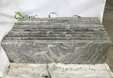 De elegante G261 Stappen van het Graniet van Juparana Grijze/Treden/Loopvlakken/Trap/Ladder